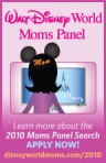 mom_panel_2010